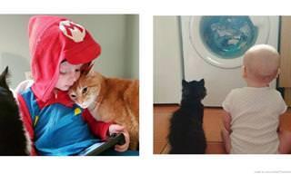 Crianças e seus animais de estimação em belas fotos