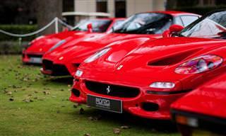 Piada do Dia: A Ferrari da Vizinha Por Apenas...