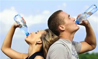 6 Razões Saudáveis Para Tomar Água Diariamente!