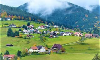 8 Atrações Incríves da Floresta Negra na Alemanha