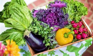 Como a Nutrição Adequada Você Pode Prevenir o Câncer