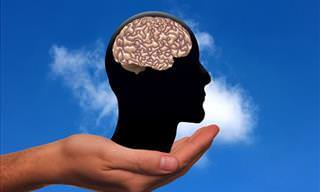 Teste: Como Seu Cérebro Funciona?