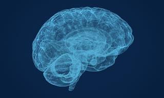 Estudo Sugere Método Que Melhora a Memória