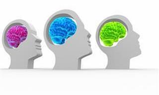Descubra Qual o Seu Domínio Intelectual Neste Teste Visual