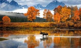Os Melhores Lugares para Apreciar o Outono