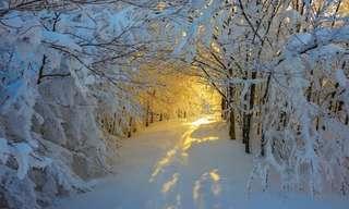 A Neve Traz Magia a Estes Lugares...