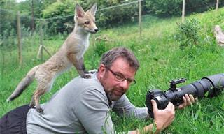 Quando os fotógrafos têm assistentes especiais