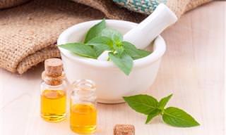 8 Óleos Essenciais Que Trazem Benefícios à Saúde
