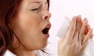 7 Razões de Problemas Frequentes de Sinusite