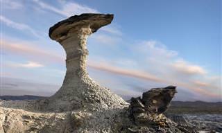 A Beleza Exótica do Deserto do Novo México