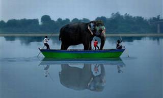 20 Imagens Bizarras da Índia