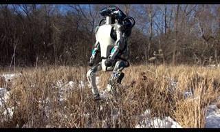 Você Vai Se Surpreender Com Este Impressionante Robô!