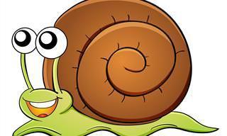 Piada: Um caracol com uma missão