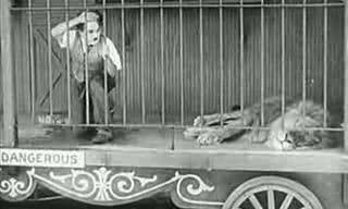Clássico de Charlie Chaplin: Não há comédia melhor!