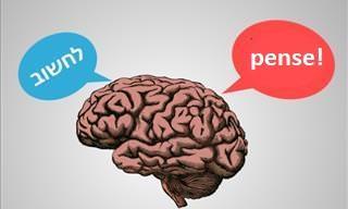 Os Benefícios de Aprender um Novo Idioma