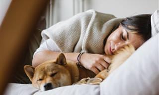 Alguns países têm hábitos de dormir bem peculiares
