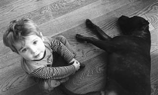 12 Motivos Pelos Quais Crianças Devem Ter Cachorros