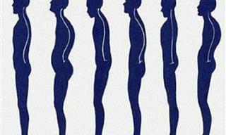 Como Acabar Com a Má Postura e Dores Nas Costas