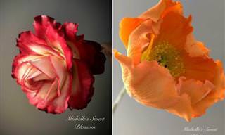 Não se deixe enganar, não são flores de verdade...