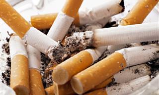 10 Alimentos Que Ajudam a Parar de Fumar e Remover Nicotina do Organismo