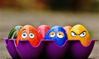 Piada do Dia: A Mulher Que Não Sabia Fritar Um Ovo