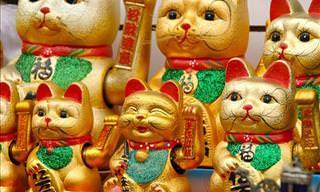 As Aventuras de Dois Gatos Pelo Japão