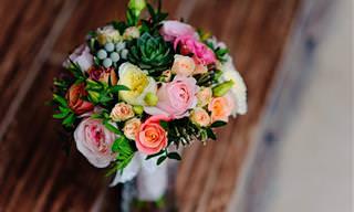 Essas Dicas Vão Conservar Suas Flores