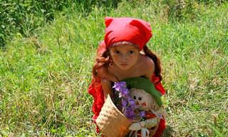 Piada do Dia: Chapeuzinho Vermelho e o Lobo
