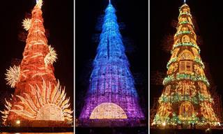 Admire estas espetaculares árvores de Natal