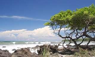 Dez Motivos Para Visitar Costa Rica