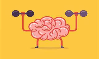 Teste: Quão Poderoso é o Seu Cérebro?