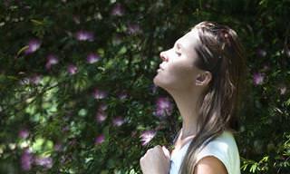 Como Trazer Paz e Tranquilidade a Sua Alma
