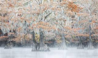 Fotos que mostram a beleza dramática da natureza