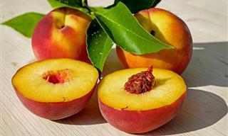 """Frutas, verduras e legumes que foram """"domesticados"""""""