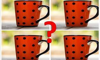 Você consegue identificar a imagem diferente? Faça o teste!