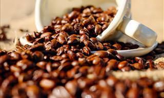 Café <b>é</b> a sua bebida favorita?