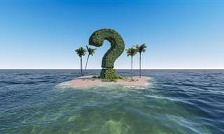 Você é capaz <b>de</b> responder este desafio sem errar?