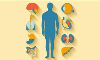 Você <b>conhece</b> o seu próprio corpo?