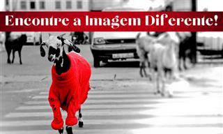 Encontre a imagem diferente